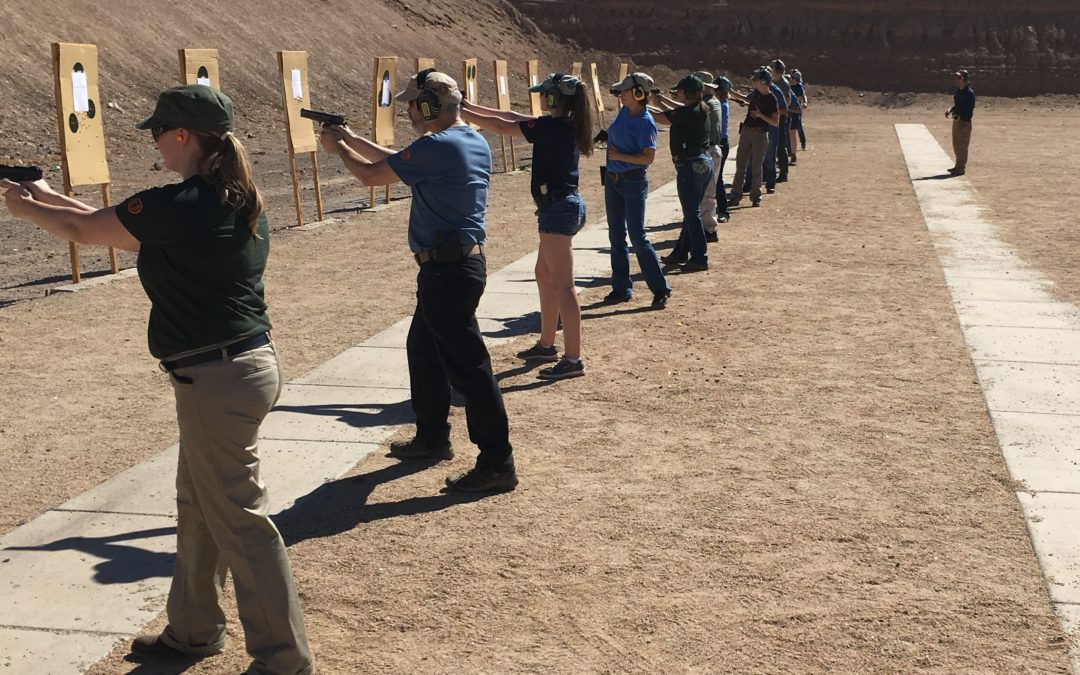 Zen Marksmen Pistol/CCW